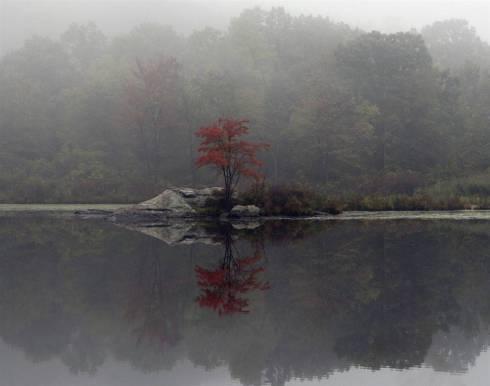 Fall Foliage in Highlands, NY